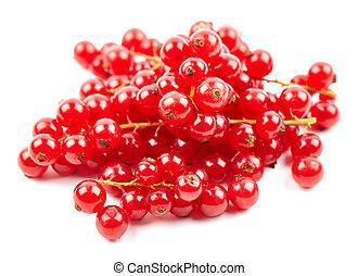 Fresh redcurrant berries on white
