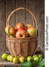 Fresh ripe apples in basket on rustic table