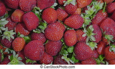Fresh ripe juicy strawberries Close up.