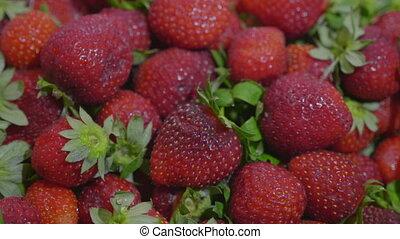 Fresh ripe juicy strawberries Close up. HD stock footage.