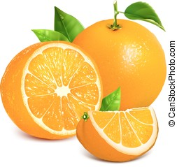 Fresh ripe oranges - Vector illustration of fresh ripe...