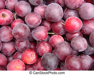 Fresh ripe plums placed on table in market. Organic red plums fruit in pile at local farmers market. Plum background