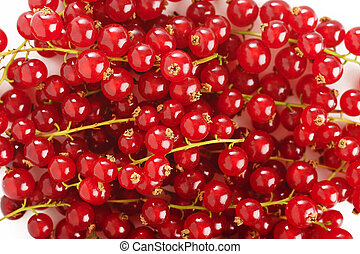 fresh ripe redcurrant