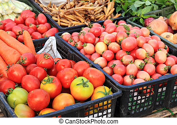 Fresh ripe tomatoes for sale