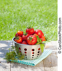 Fresh ripe tomatoes in colander
