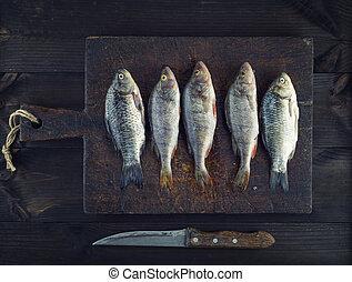 fresh river fish perch and crucian