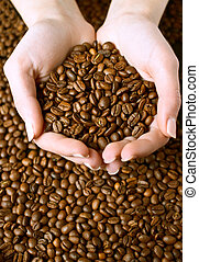 Fresh roasted coffee beans in hands