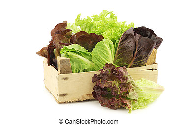 fresh romaine and red lettuce in a wooden crate