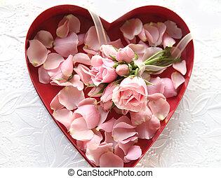 Fresh roses and rose petals in box