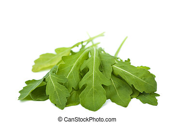fresh rucola isolated