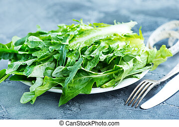 rucola - fresh rucola on plate and on a table