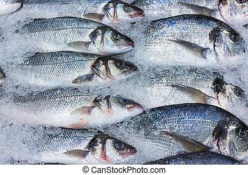 fresh russian fish 2