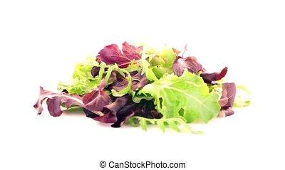 Fresh salad mix