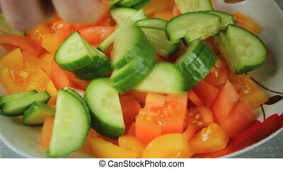 Fresh salad of tomato and green cucumber