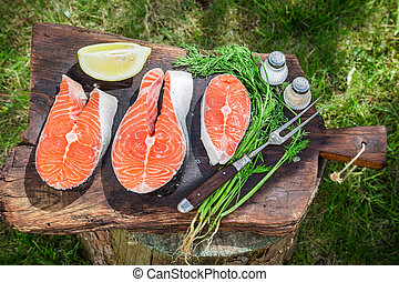 Fresh salmon with lemon and dill in garden
