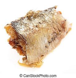 fresh sardine isolated on a white background