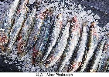 Fresh sardines on a coarse salt layer over a slate...