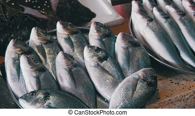 Fresh Sea Fish on the Counter Market