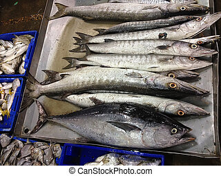 Fresh sea fishes in boxes, longtail tuna