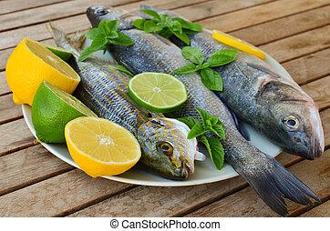Fresh seabass and goldline fish