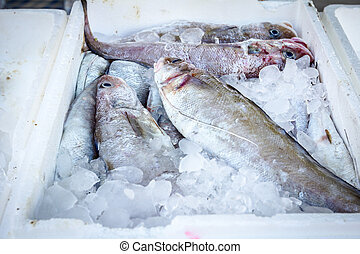 Fresh seafood in box with ice at the fish market