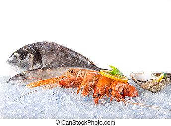 Fresh seafood on crushed ice. - Fresh seafood on crushed...