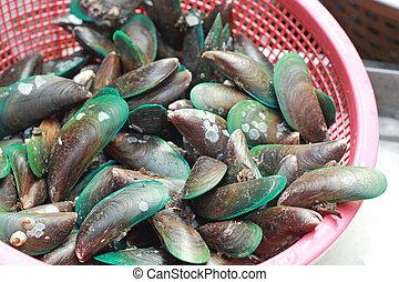 fresh shellfish in the market