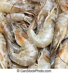 Fresh shrimps use as food background