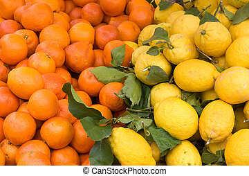 fresh sicilian citrus - oranges and lemons in the Italian market