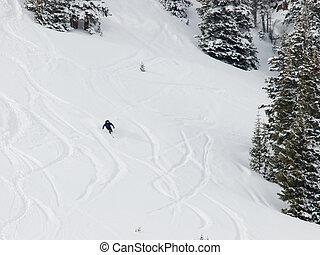 Fresh ski track on mountain side at Berthoud Pass, Colorado.