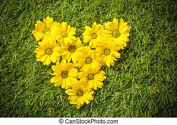 Fresh spring flowers in heart shape on grass.