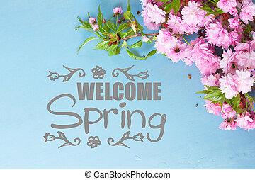 fresh spring flowers on blue