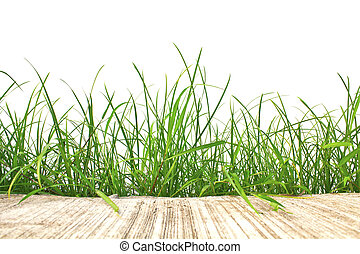 Fresh spring green grass and cement road isolated on white background.