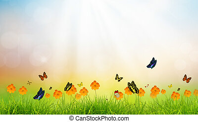 Fresh spring green grass with butterfly , Summer time
