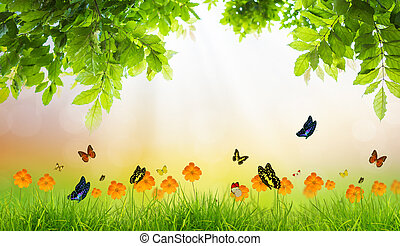 Fresh spring green grass with green leaf and butterfly , Summer time