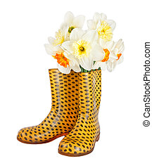 Fresh spring narcissus flowers in children's yellow boots