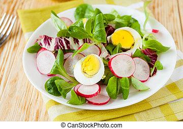Fresh spring salad with radish and egg