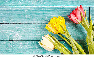 Fresh spring tulips background with copy space