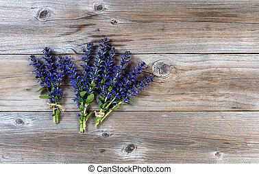 Fresh Spring Wild Flowers On Rustic Wood Background