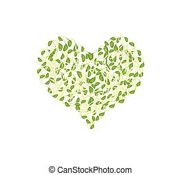 Fresh Sprout Beans in A Heart Shape - Love Concept, ...
