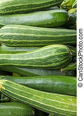 Fresh squash for sale at the market