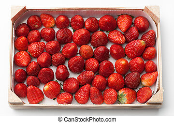 fresh strawberries in the box