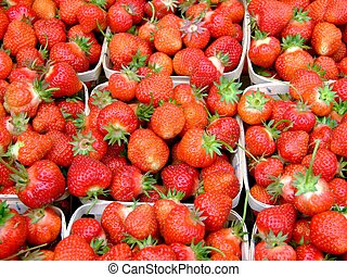 fresh strawberries macro - fresh strawberries grown on...