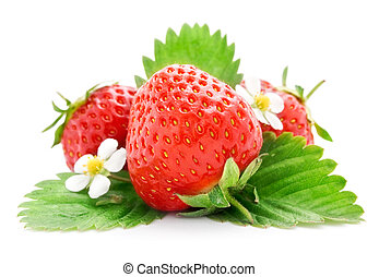 fresh strawberry fruits with flowers and green leaves isolated on white background