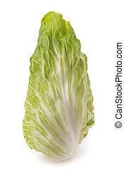 sugarloaf lettuce - Fresh sugarloaf lettuce isolated on ...