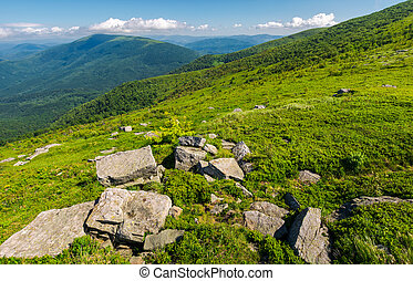 fresh summer landscape in mountains. rocks on the grassy...