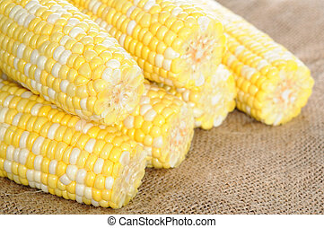 sweet corn - fresh sweet corn display at market place