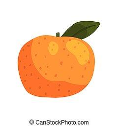 Fresh tangerine fruit vector Illustration on a white background