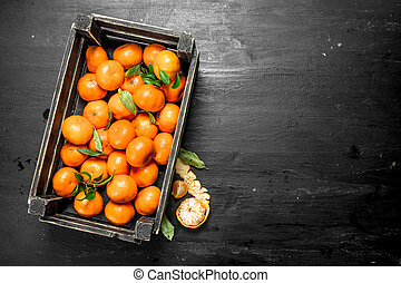 Fresh tangerines in a box.