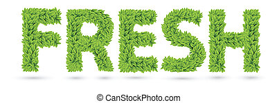 Fresh text of green leaves isolated on white